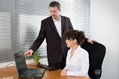 picture of presenting  - A businessman presenting his product to the woman - JPG