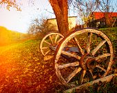 picture of wagon  - wagon wheel in the countryside  orange daylight - JPG