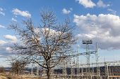 Winter Tree Against Electric Power Substation