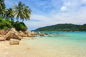 stock photo of malaysia  - Serene view on the tropical sandy beach with coconut palms - JPG