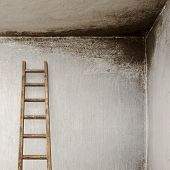 stucco wall with wooden ladder