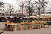 Local Farmer Market In Center Of Ljubljana, Slovenia.