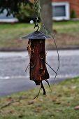 The Wooden Bird feeder