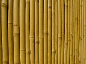 beautiful Thai bamboo fence background