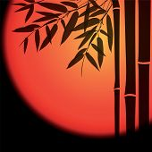 picture of bamboo leaves  - Bamboo trees and leaves with red sun on black background - JPG