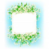 Vector card with small white flowers