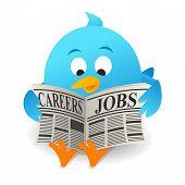 Blue bird Search Jobs