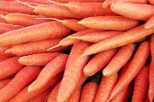 picture of root-crops  - Closeup view of fresh carrot pile on a display at the local farmers market - JPG