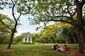 People picnic in the Singapore Botanic Garden