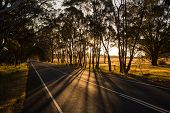 Australian Country Road at Sunset