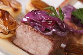 Tasty Meat With Caramelized Red Onion Macro. Horizontal