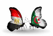 Two Butterflies With Flags On Wings As Symbol Of Relations Egypt And Algeria