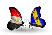 Two Butterflies With Flags On Wings As Symbol Of Relations Egypt And Barbados