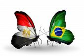 Two Butterflies With Flags On Wings As Symbol Of Relations Egypt And Brazil