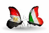 Two Butterflies With Flags On Wings As Symbol Of Relations Egypt And Ireland