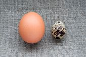 Chicken and quail eggs on hessian linen fabric cloth