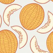 Hand Drawn Melon With Slice Seamless Pattern