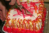 cutting bday cake