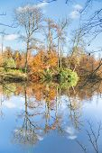 Fall forest with mirror image in water
