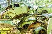 image of wrecking  - Group of old wrecked and rusty cars in the forest - JPG