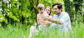 image of dandelion seed  - Family with son on meadow blowing dandelion seed - JPG