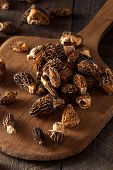 pic of morel mushroom  - Raw Organic Morel Mushrooms Ready to Cook - JPG