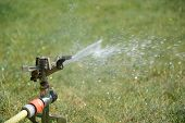 stock photo of sprinkler  - Sprinkler splashing with water on lawn in garden - JPG