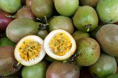 stock photo of creeper  - Agriculture field passion fruit is nutrition Vietnam fruit rich vitamin C healthy food creeper with full of passionfruit beautiful flower on farm - JPG