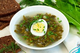 picture of sorrel  - Fresh organic green soup with sorrel and egg horizontal - JPG