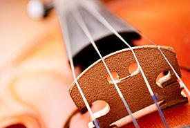 stock photo of string instrument  - Extreme Close Up of Violin Bridge and Strings Selective Focus Detail of Violin Musical Stringed Instrument - JPG