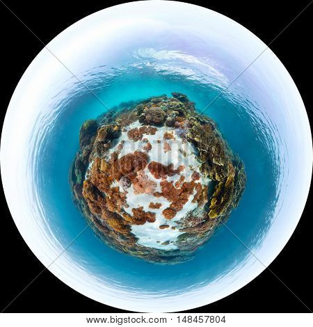 Panorama in the form of sphere of the sea floor with corals