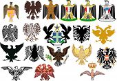 illustration with different heraldic eagles on white background