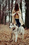 Girl In The Park Their Home With A Dog Husky. The Girl With The Siberian Husky. Delightful Girl Play poster