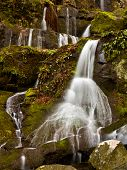picture of gatlinburg  - Waterfall in the place of a thousand drips near Gatlinburg in Smoky Mountains - JPG