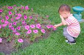 Cute Little Asian 18 Months / 1 Year Old Toddler Baby Boy Child Suffer From Pollen Allergy At Beauti poster