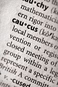 Dictionary Series - Politics: Caucus