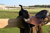 Saddle On Fence