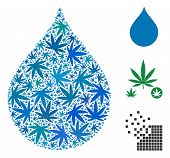 Drop Composition Of Weed Leaves In Different Sizes And Color Tinges. Vector Flat Weed Leaves Are Org poster