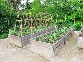 Raised Garden Frames