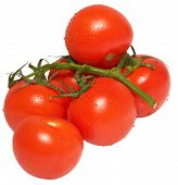Branch Of Tomato
