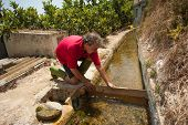 Trabajo de riego tradicional