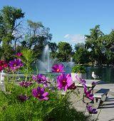 Gibson Fountain 3