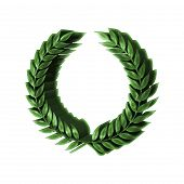 pic of dimentional  - 3D Green laurel wreath award isolated on white - JPG
