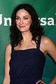 LOS ANGELES - APR 22:  Joanne Kelly at the NBCUniversal Summer Pres Day 2013 at the Huntington Langh