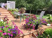 image of potted plants  - a beautiful exterior living space designed for summer living - JPG