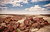 stock photo of petrified  - Colorful clay mountains of Petrified Forest and Painted Desert National Park - JPG