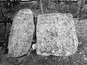 Glifos Mayas de Coba