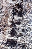Frost Ice Crystals Under Frozen Wather