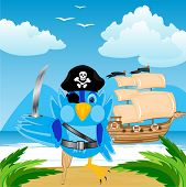 Bird Pirate Ashore Tropical Island