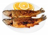 stock photo of brook trout  - two fried river trout fishes on plate isolated on white background - JPG
